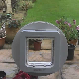 Cat Flap Installations Woodley